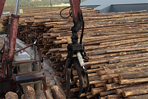 Western Washington Firewood